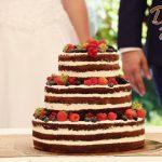 Klasický dort naháč a ovoce