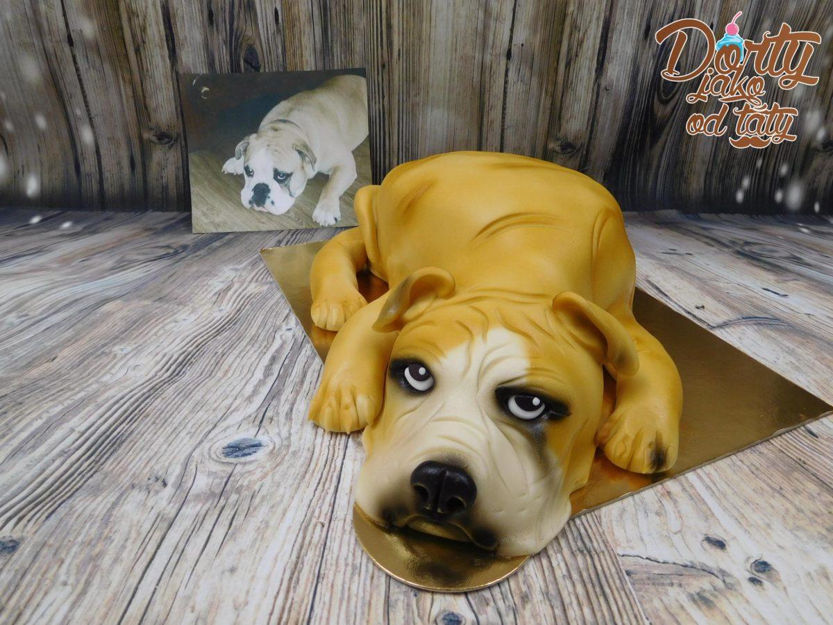 pes podle fota