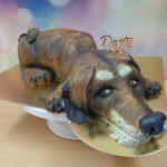 3D starsi pes dort